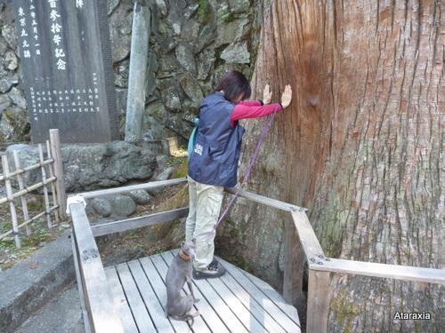 mitsumine_shrine (54)