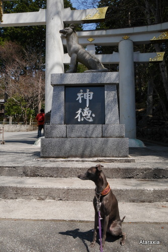 mitsumine_shrine (9)