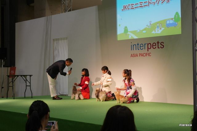 interpets2014_ataraxia (23)