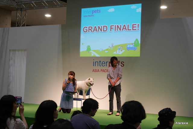 interpets2014_ataraxia (37)
