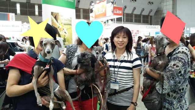 interpets2014_ig-(3)